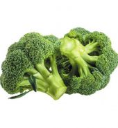 Broccoli – 1 Piece (350 to 450 gm)